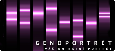 Genoportrét - obraz podle předlohy DNA